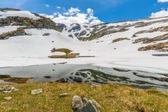 Norge reflexion Arkivfoton