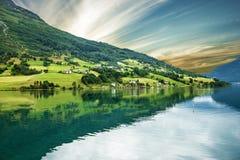 Norge sjösida för Olden gröna kullar Norsk fjord i sommar Fotografering för Bildbyråer