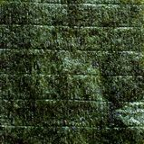 Nori Foto de archivo libre de regalías