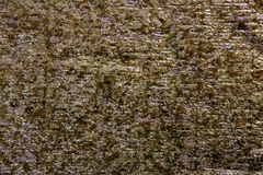Nori dried sheet to prepare sushi food Royalty Free Stock Photos