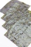 Nori , Japanese edible seaweed Stock Photography