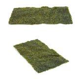 Nori Seaweed isolou-se no branco imagens de stock