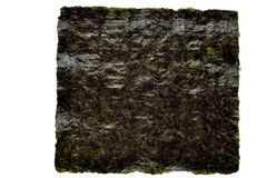 Nori seaweed sheet on a white Stock Photography