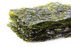 Nori secado curruscante de la alga marina foto de archivo libre de regalías