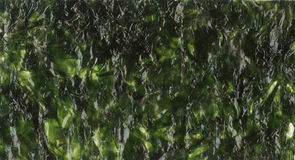 Nori sheet seaweed dried seaweed background texture image. Royalty Free Stock Photography