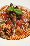 norma意大利面食 库存图片