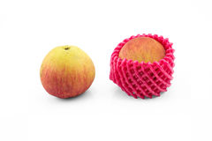 Normal apple and apple with foam protection net on isolated whit. E background photo stock images