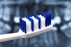 Normal blue-white toothbrush Stock Photo