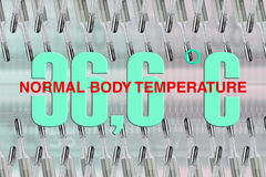 Normal body temperature Royalty Free Stock Photography