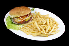 Normal burguer with french fries Stock Image