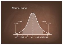 Normal Distribution Diagram or Bell Curve on Brown Chalkboard. Business and Marketing Concepts, Illustration of Gaussian Bell Curve or Normal Distribution stock illustration