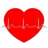 Normal ECG-elektrokardiogram med röd hjärta Royaltyfri Fotografi
