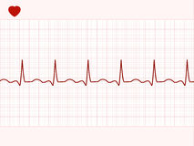 Normal electronic cardiogram. EPS 8 Stock Images
