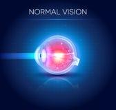 Normal eye vision blue background Stock Image