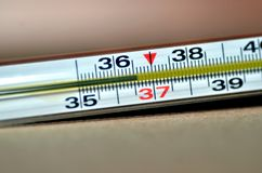 Normal temperature on thermometer royalty free stock images
