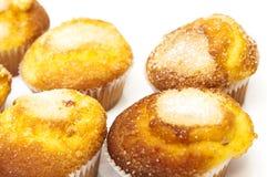 Normala muffin Arkivbild