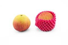 Normaler Apfel und Apfel mit Schaumschutznetz auf lokalisiertem Whit Stockbilder