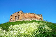 Norman castle, Tamworth. Royalty Free Stock Images