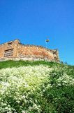 Norman castle, Tamworth. Stock Photo