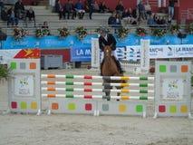 Normandie hästshow Royaltyfri Bild