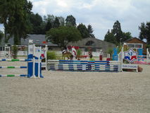 Normandie-Pferdeshow Lizenzfreies Stockfoto