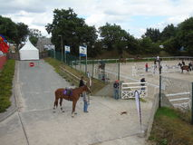 Normandie-Pferdeshow Stockbilder