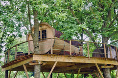 Normandie, wood hut in a tree in the park of Canon castle Stock Images