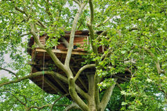 Normandie, wood hut in a tree in the park of Canon castle Royalty Free Stock Images