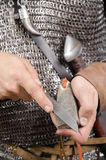 Normandisk krigare Arkivfoto