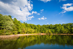 Normando del lago, en el área del acceso de McCrary, en Mooresville, villancico del norte fotos de archivo