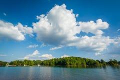 Normando del lago, en el parque de la ficha, en Cornelio, Carolina del Norte fotografía de archivo