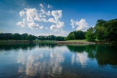 Normando del lago, en el parque de la ficha, en Cornelio, Carolina del Norte imagenes de archivo