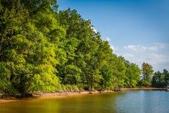 Normando del lago, en el parque de la ficha, en Cornelio, Carolina del Norte fotografía de archivo libre de regalías