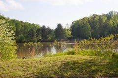 Normando do lago Imagens de Stock Royalty Free