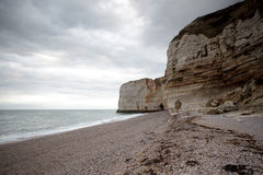 Normandy Cliff Coast Royalty Free Stock Image