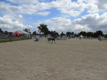 Normandy Horse Show Royalty Free Stock Image