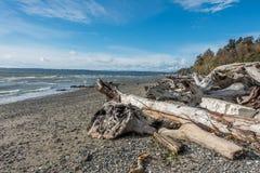 Normandy Park Shoreline Royalty Free Stock Image