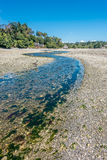 Normandy Park Stream 5 Stock Image