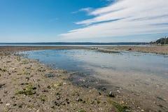 Normandy parka strumień 2 Fotografia Royalty Free