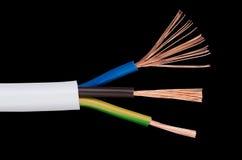 Norme du CEI de câble de courant électrique au-dessus de noir Photographie stock libre de droits