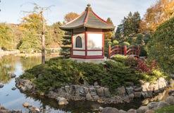 Normy doliny college społecznego japończyka ogród w jesieni Zdjęcie Stock