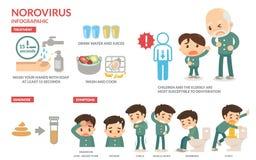 Norovirus Infographic. Stock Photos
