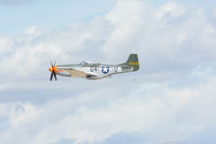 Norr - amerikansk mustang P-51 Royaltyfri Bild