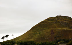 Norr Berwick Law - kulle Arkivbild