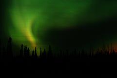 norr borealis arkivbild