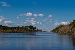 Norr Carolina Intercoastal Waterway som fodras med träd royaltyfri fotografi