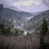 Norr Carolina Winter Mountain Scene royaltyfria bilder
