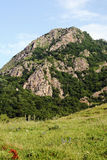 norr caucasus foothills Arkivfoton
