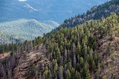 Norr cheyenne kanjonkanon Colorado Springs royaltyfria bilder