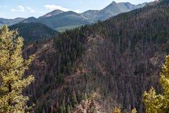 Norr cheyenne kanjonkanon Colorado Springs fotografering för bildbyråer